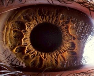 eye thumb